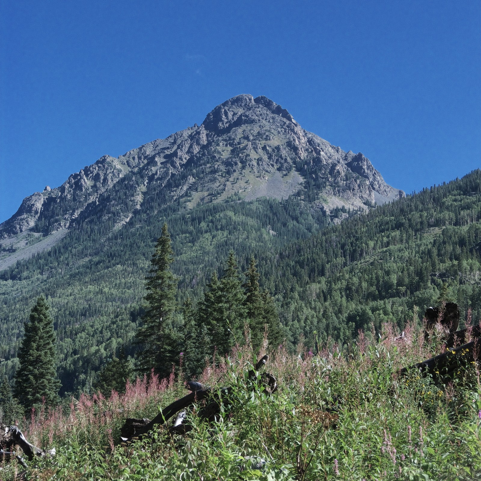 Irving Peak from the SW