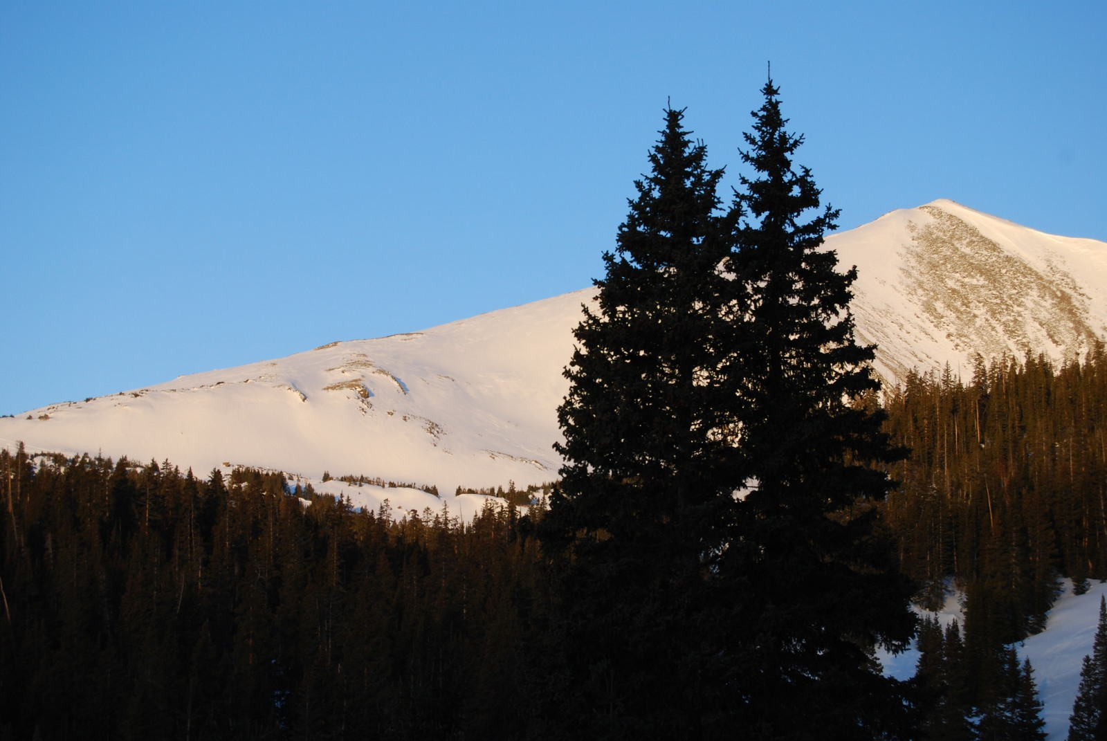 Homestake Peak seen from 10th Mountain Division Hut in March, 2009